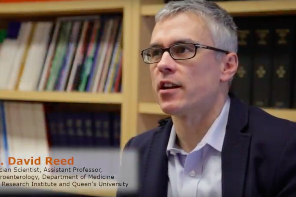 Dr. David Reed