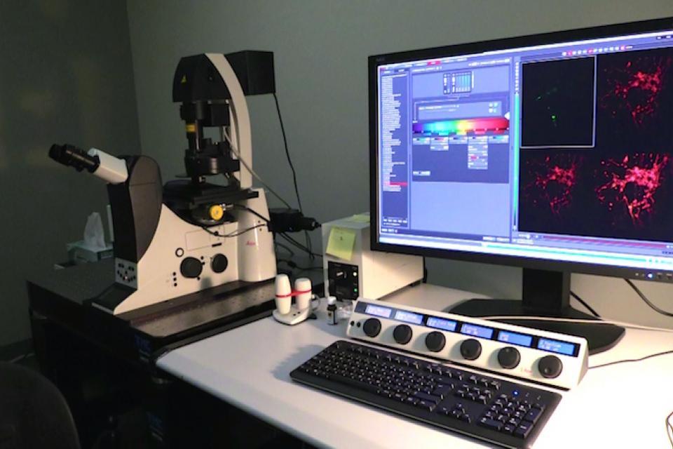 Dr. Archer's Lab equipment