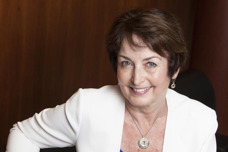Dr. Elizabeth Eisenhauer tabbed to lead creation of KHSC's first innovation portfolio