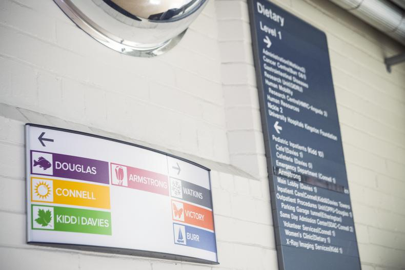KGH's new colourful wayfinding signs are replacing the old gray and white ones