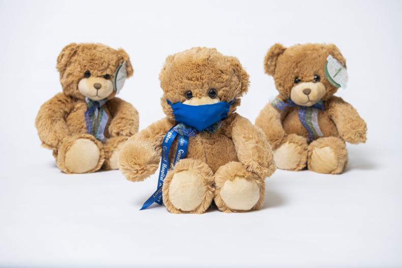 image of 2020 Teddy Bear