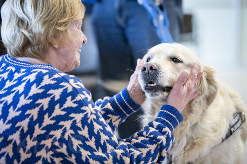 patient with therapy dog