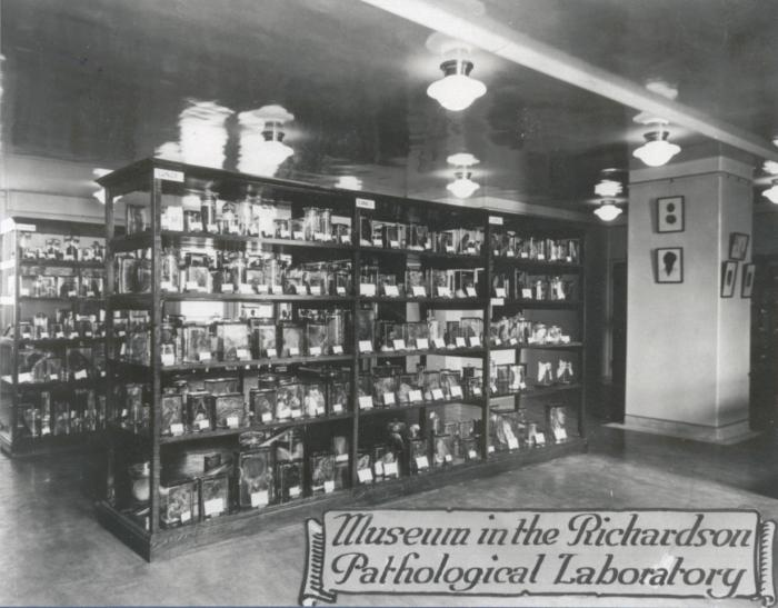Museum in the Richardson Pathology Labs late 1920's