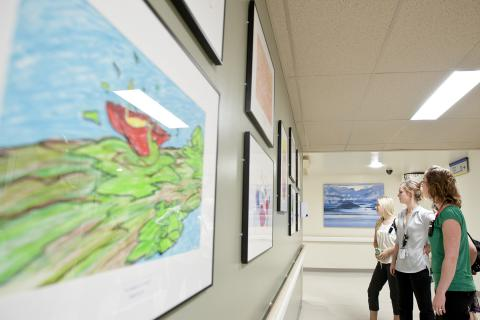 Art gallery in Burr wing all about coping and recovery