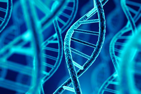 Genetics Patient and Family Day will be held on October 14
