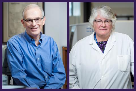 Dr. Paul Manley and Suzanne Torgerson are among 135 people to receive long-service awards